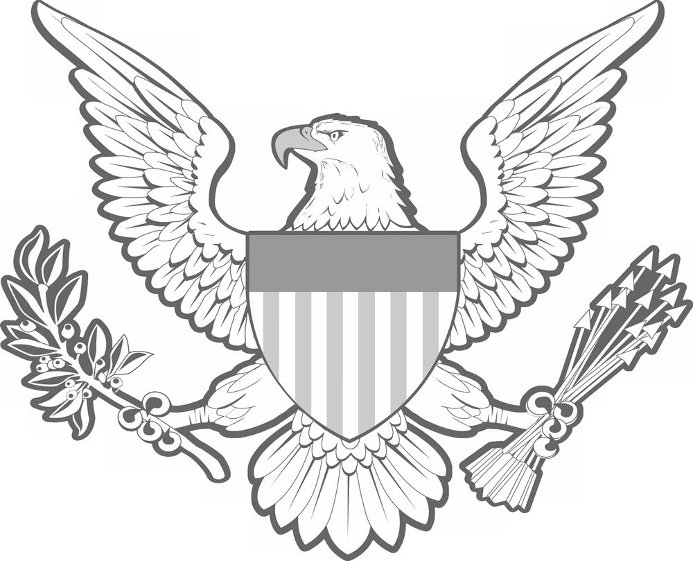 DCMA Eagle